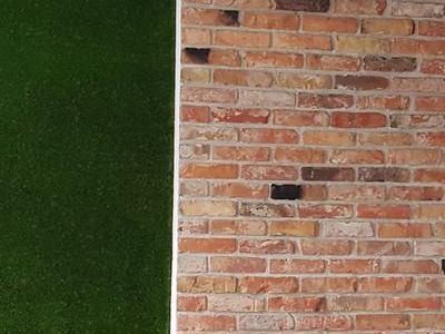 zielona ściana ściana jak mur wykańczanie wnętrz